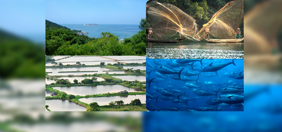 India- Philippines Business Conference on Marine Fisheries and Aquaculture